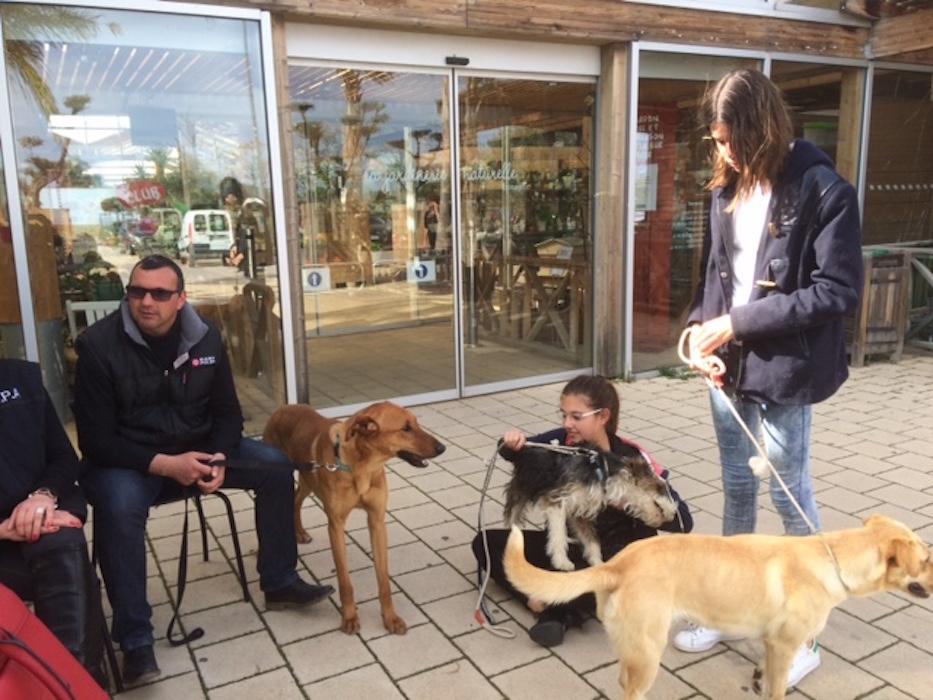 rencontre adoption